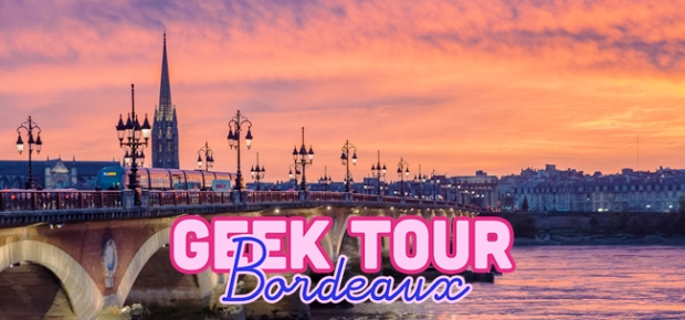 Geek-Tour-Bordeaux-Robot-Paradise